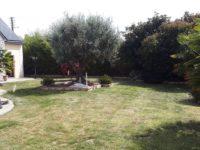 Création et entretien d'un parc paysager